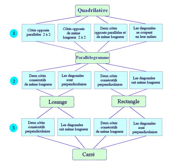 Parallélogramme bilan