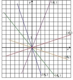 Courbes de fonctions linéaires.