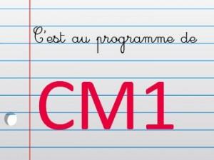 maths CM1 300x225 Mathématiques au CM1