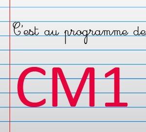 Maths au CM1
