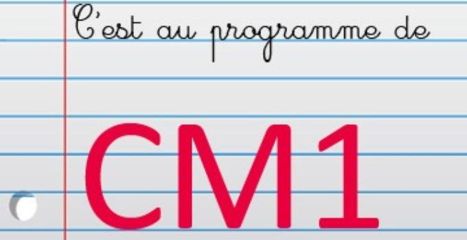 Exercices De Geometrie En Maths Au Cm1 Corriges