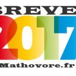 France 2017 : sujet du brevet de maths avec son corrigé