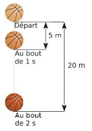 Chute d'un ballon et proportionnalité