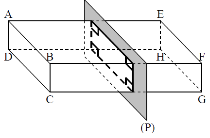section pavé droit
