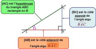 vocabulaire triangle rectangle